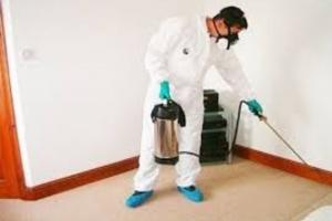 شركة تنظيف فى ام القيوين